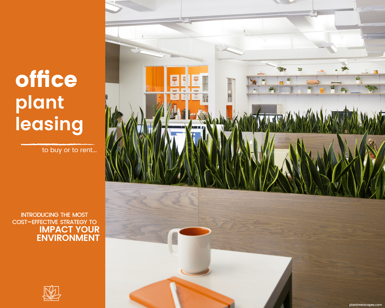 Office Plant Leasing