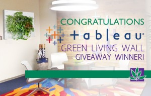 green living wall giveaway plant interscapes