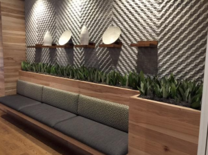 top trends in interior plant service