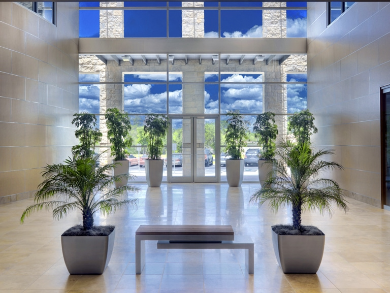 Benefits Of Interior Plant Service Natura Enhancing The Built Environment Indoor Office Plants Outdoor Landscapes Green Wall Systems Holiday Decor Commercial Disinfection
