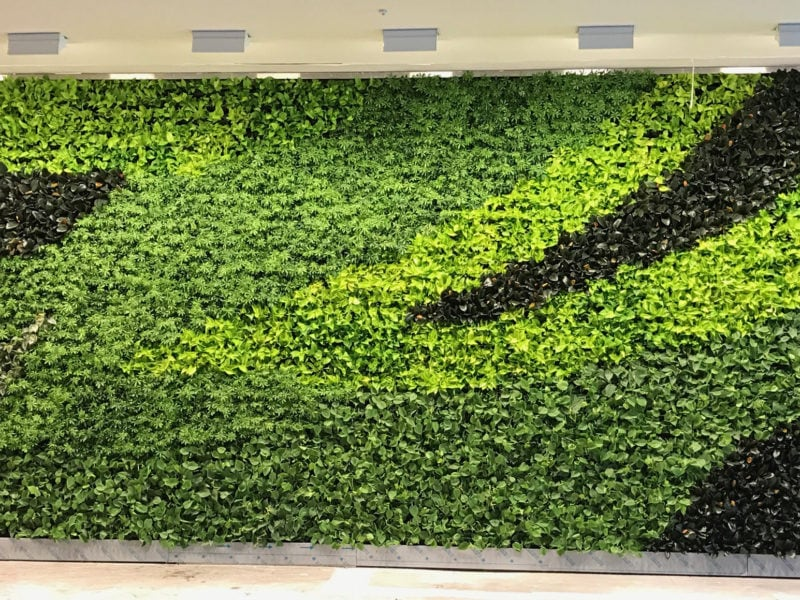 Green Wall Design for Hotel Lobby
