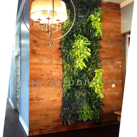 Sage Botanical Media Living Wall