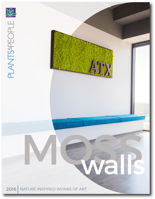 Moss Wall Art Brochure - Plant Interscapes