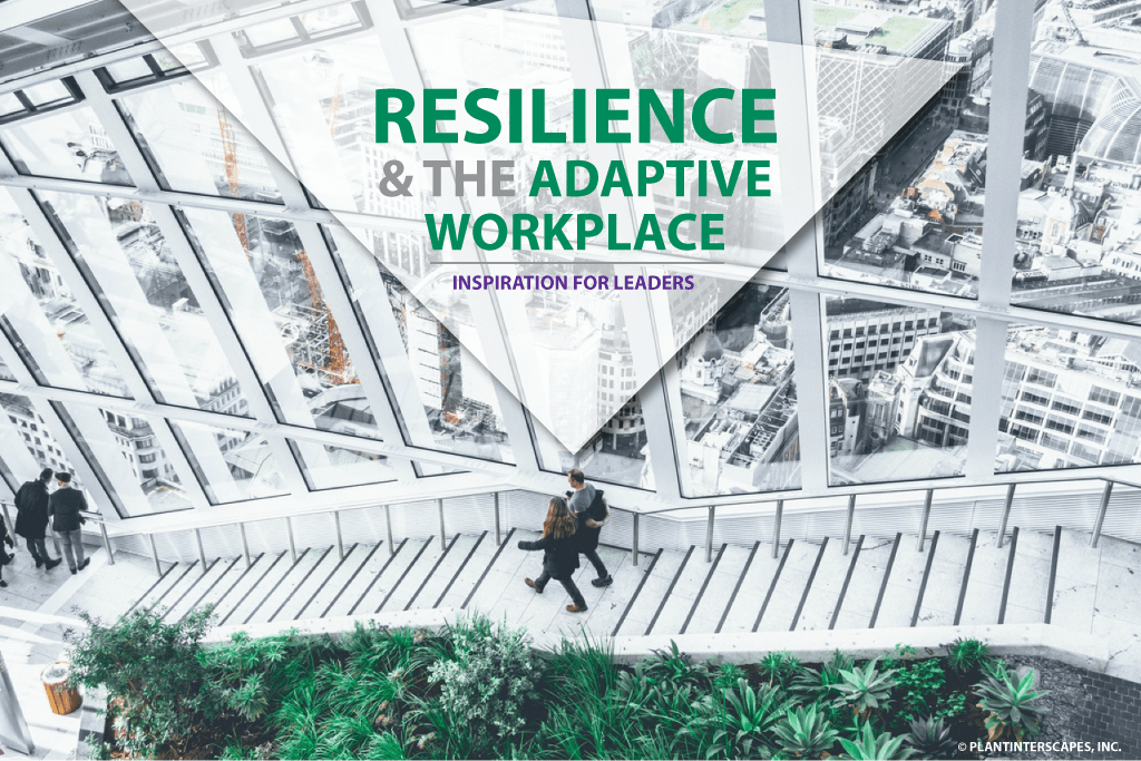 Resilience & the Adaptive Workplace