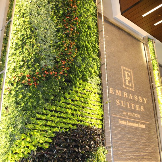 Hotel Lobby Green Living Wall in Denton Texas by Plant Interscapes