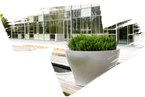 Exterior Outdoor Plants