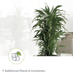 Add a la cart Plants & Containers