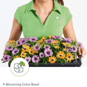 Blooming Seasonal Color Bowl