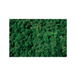 Dark Green Reindeer Moss
