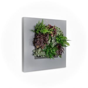 Green Wall Systems - Cassette Type