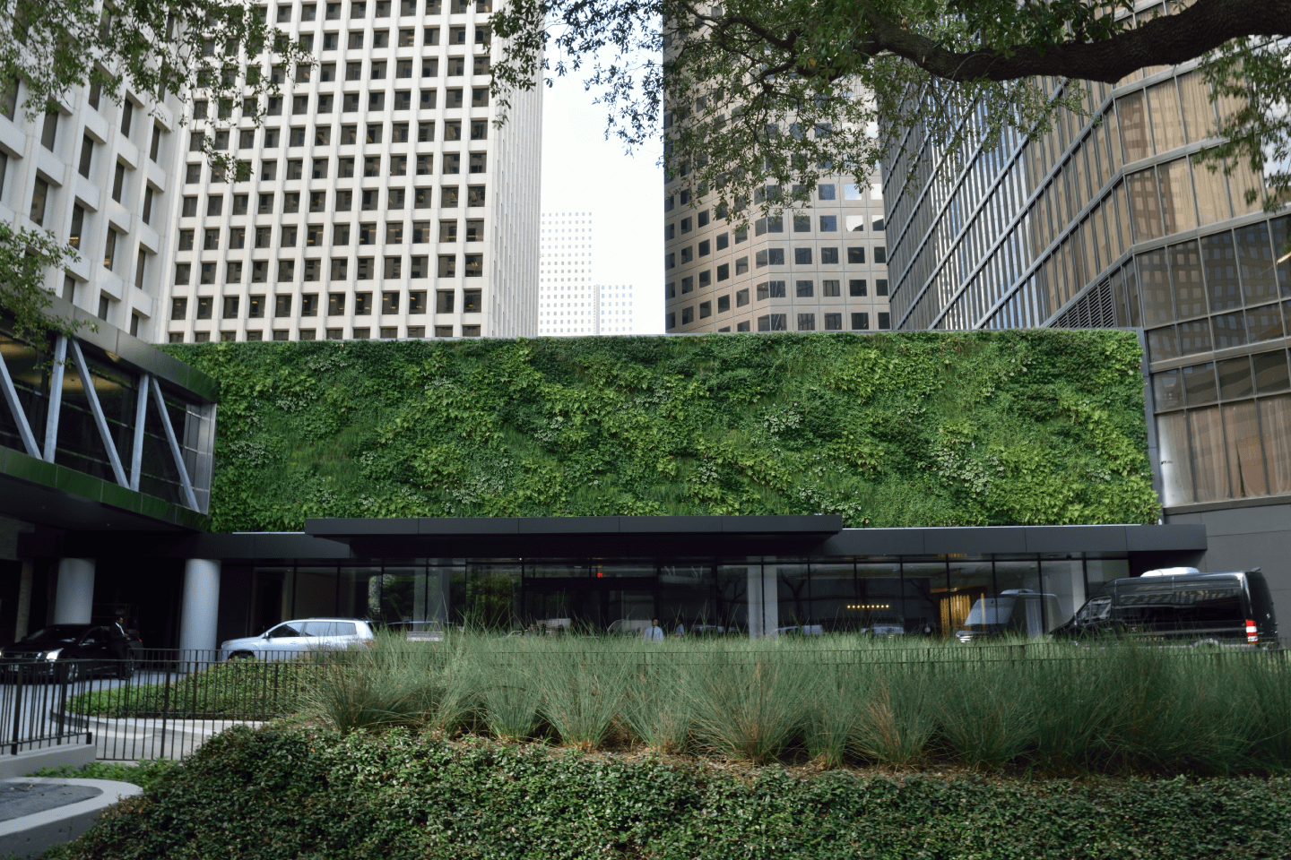 Green Living Wall - Houston by Sage Greenlife + Natura