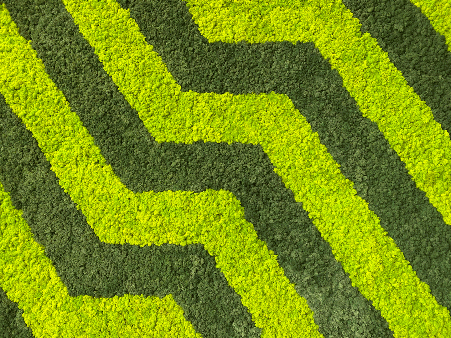 Geometric Moss Wall Art Design