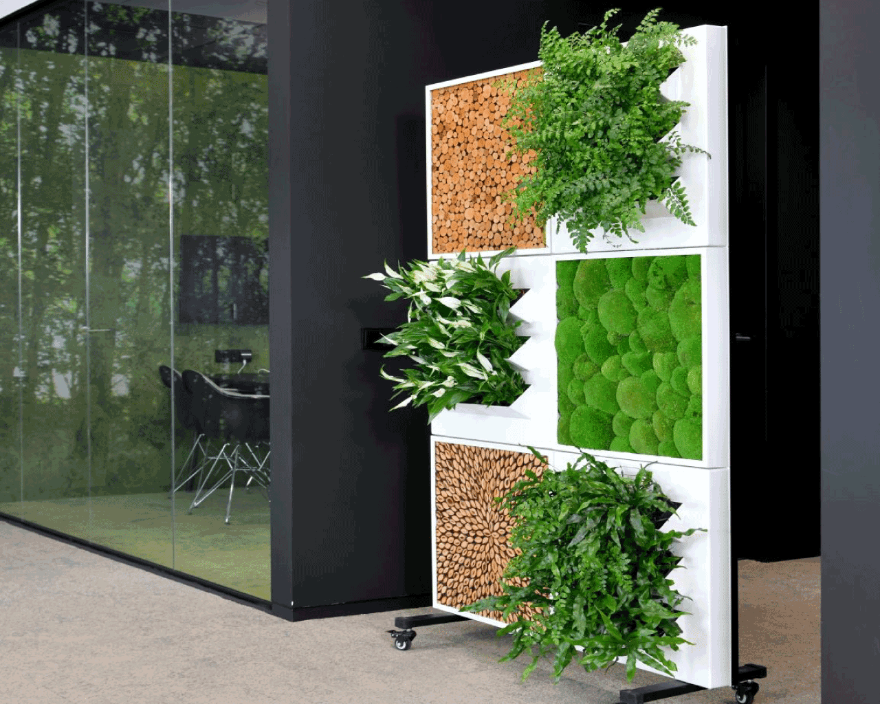 Live Plant+Moss Office Divider