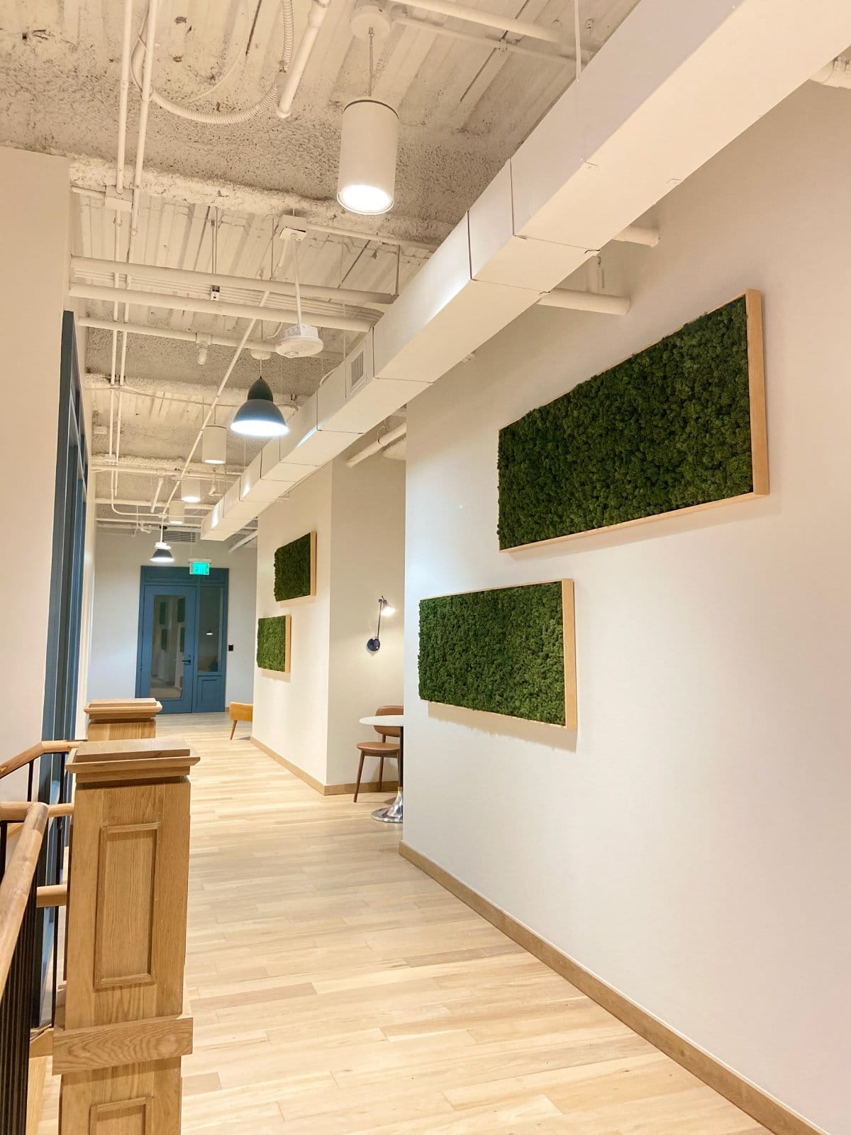 Moss Wall at The Common Desk TCC