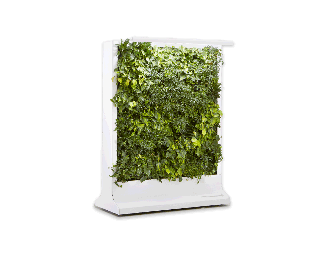 Movable Green Living Wall