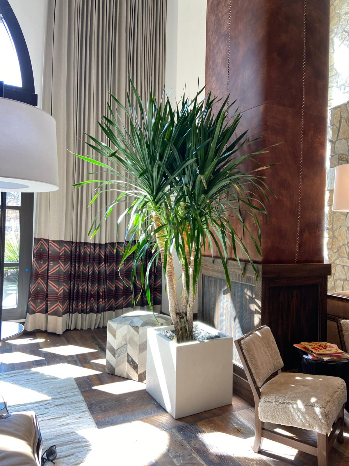 Hotel Drover - Plant Design by Natura