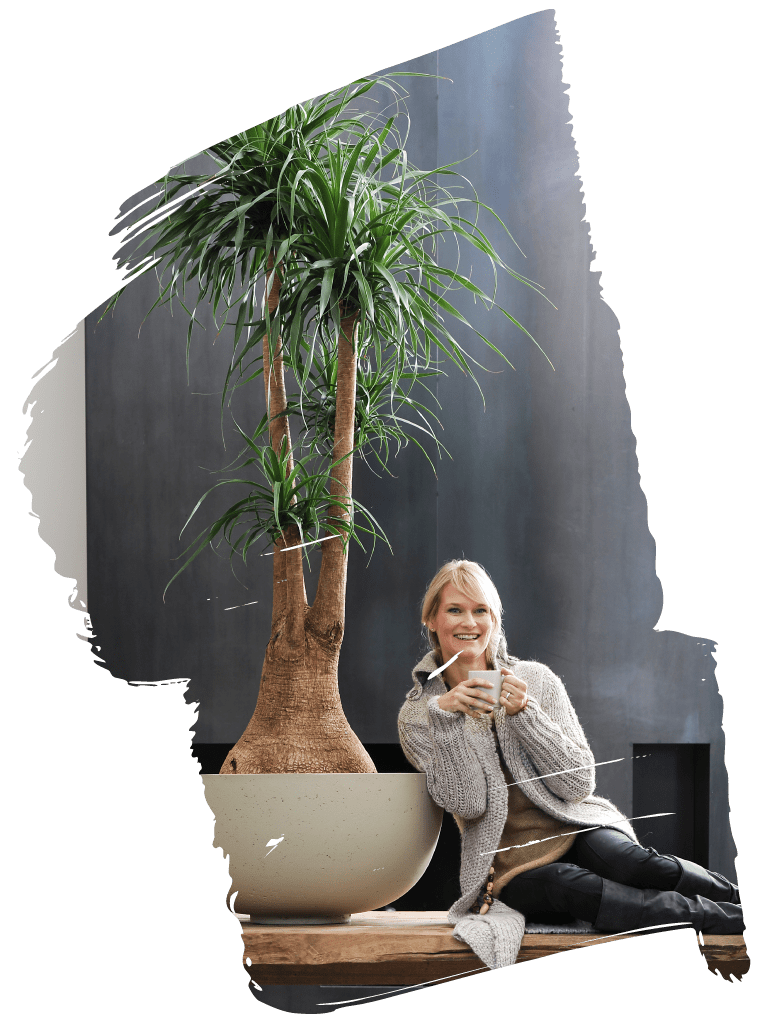woman sitting under a ponytail palm
