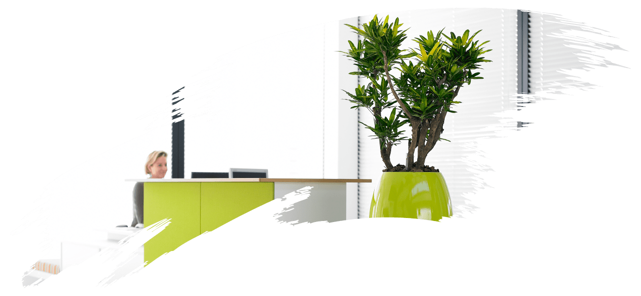 Woman working in office with plants